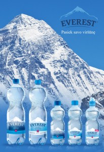 Everest logo 2